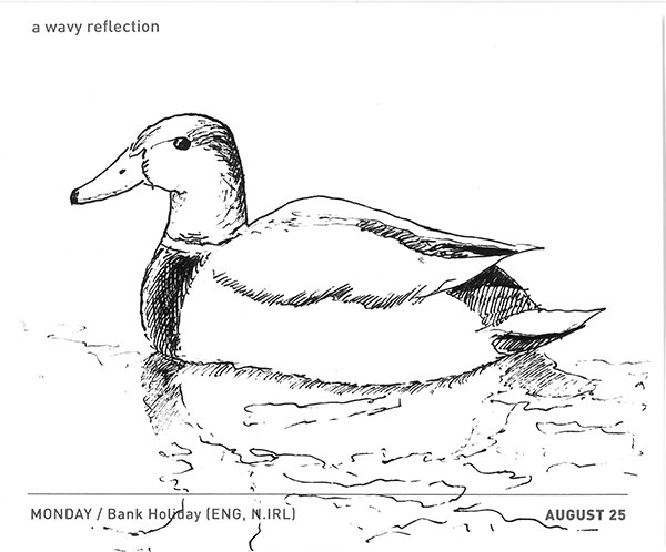 Duck And Wavy Reflection